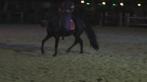 Skilled female circus performer riding beautiful horse at arena, entertainment Footage