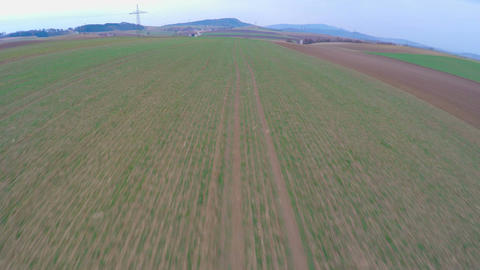 Green farmland, aerial view of long cultivated fields. Agriculture, farming Footage