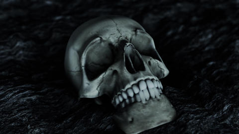 Scary Human Skull Close Up Live Action