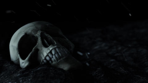 Scary Looking Human Skull in a Horror Atmosphere Live Action
