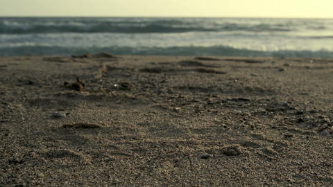 Disposable plastic dirty coffee cups discharged waste,pollution on sea shore Live Action