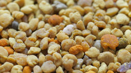 Macro zoom out shot of Bee pollen grains Live Action