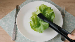 Diet concept. Placing single leaf of lettuce on a plate Live Action