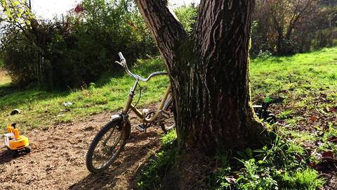 An old bicycle leaning against a tree GIF