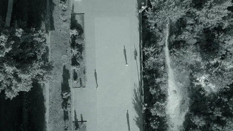 Top view of passers-by walking in the park black white video Live Action