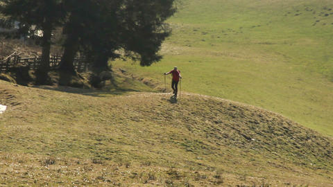 Man hiking on trail in green mountain valley, enjoying solitude, active leisure Footage