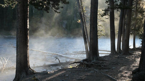 Misty river and forest sunrays Yellowstone nature P HD 2536 Footage