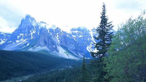 Mountain Banff Park P HD 7444 Live Action