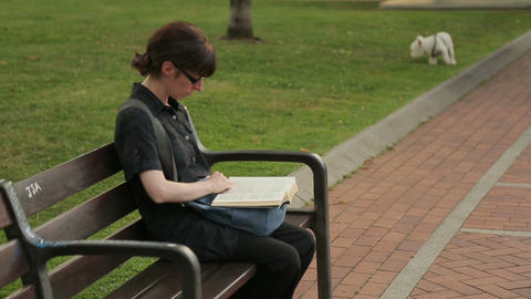 Woman reading book while having rest in summer park, funny dog playing on lawn Footage