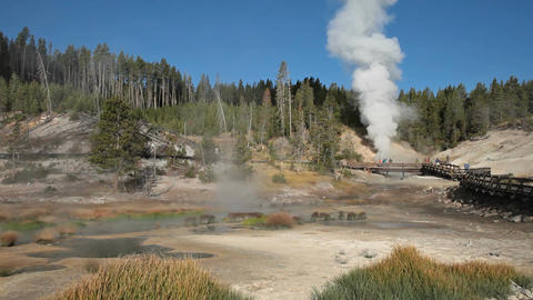 Mud Geyser area Yellowstone pan P HD 2553 Footage