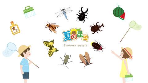 夏の昆虫採集と子供のアニメーション CG動画