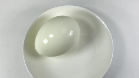 Boiled egg019 ライブ動画