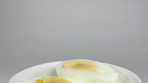 Boiled egg052 ライブ動画