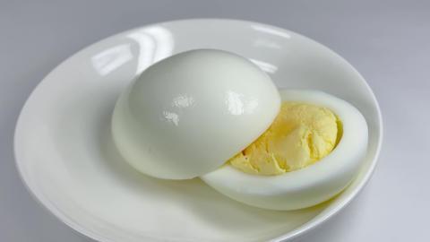 Boiled egg057 ライブ動画