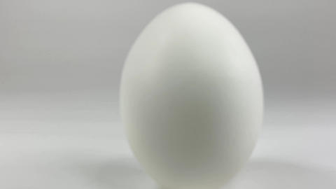Chicken egg015 ライブ動画