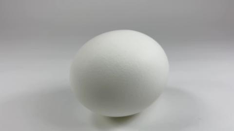 Chicken egg007 ライブ動画