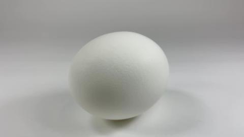 Chicken egg009 ライブ動画