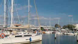 Gdynia city, Poland. Yacht marina Live Action