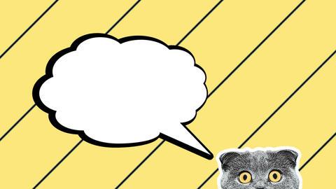 advertising background cat empty speech bubble Animation