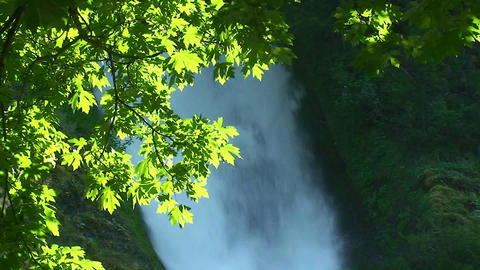 A waterfall in a forest Stock Video Footage