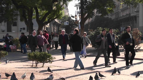Crowds of people walk across a street and through a small park pathway Footage