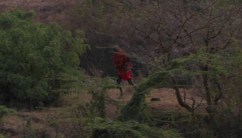 A man is running through a wooded area Stock Video Footage