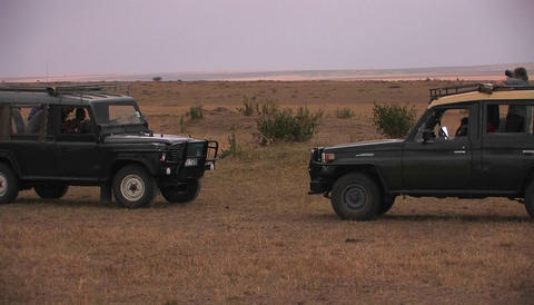 Two off road vehicles in a savanna Footage