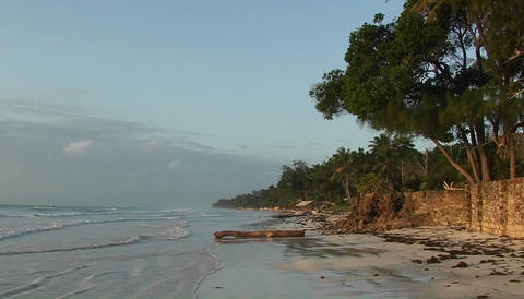 Calm waves come ashore a beautiful tropical beach Stock Video Footage