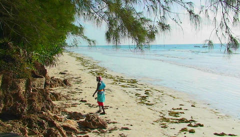 A woman walks along the beach then sits down, talking or singing, as the waves roll in Footage