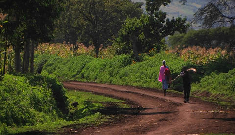 A woman and boy walk down a country road, the boy... Stock Video Footage