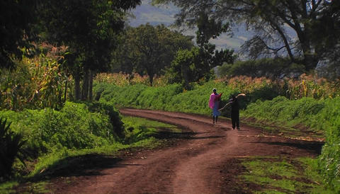 A woman and boy walk down a country road, the boy carrying a package and the woman a parasol Footage