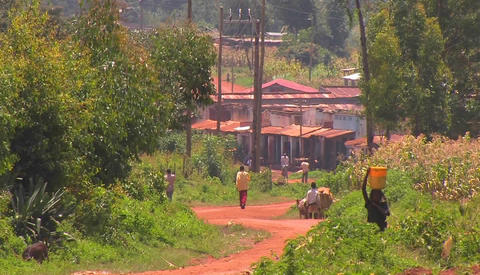 People in a small village walk down a red dirt road Footage