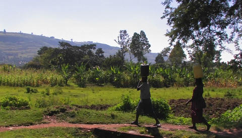 Women walk along a path in a rural area carrying packages... Stock Video Footage