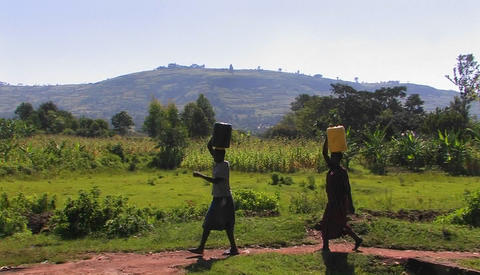 Women walk along a path in a rural area carrying packages on their heads Footage