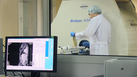 biologycal laboratory Stock Video Footage