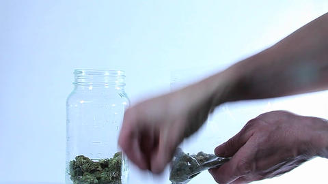 A person puts marijuana in a glass jar from a plastic bag Live Action