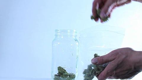 Hands transfer marijuana from a plastic bag to a glass jar Footage