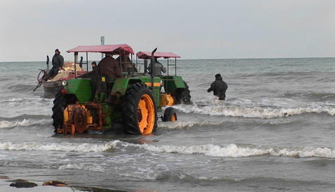 Several tractors roll into the water off the coast of Iran Stock Video Footage