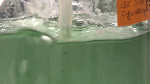 Flask containing algae being aired under laboratory... Stock Video Footage