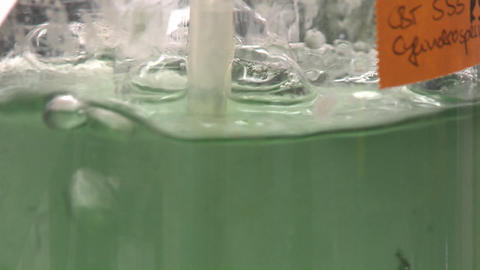 Flask containing algae being aired under laboratory lighting conditions. Cultures of cyanobacteria b Footage