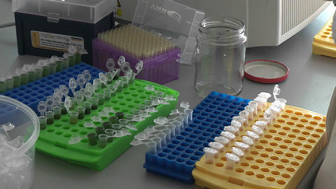 Several reaction vials on a laboratory table in a... Stock Video Footage
