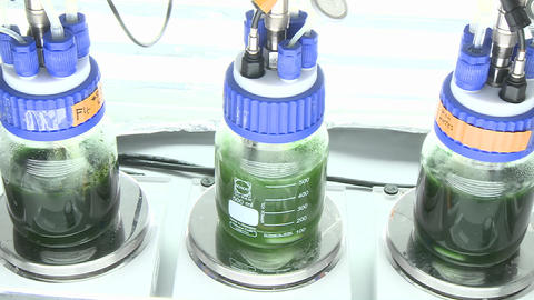 Lab-scale, small scale photo-bioreactor with three... Stock Video Footage