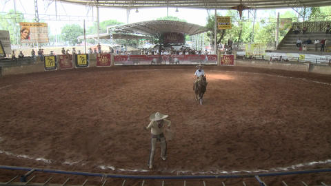 A Mexican cowboy lassos a horse with a rope and then stop... Stock Video Footage
