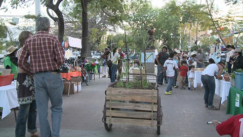 People on the middle of an avenue in an organic market moving around an organic agriculture bicycle Footage