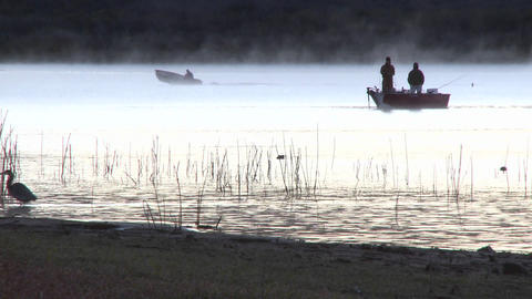 Fishing boat and great blue heron at sunrise on Lake... Stock Video Footage
