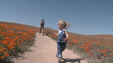 Front point of view of child running through the... Stock Video Footage