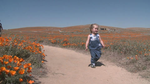 Front point of view of child running through the california poppies in bloom in the Antelope Valley Footage