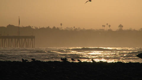 Close up surfer silhouette getting out of the water during sunrise at Surfers Point in Ventura, Cali Footage