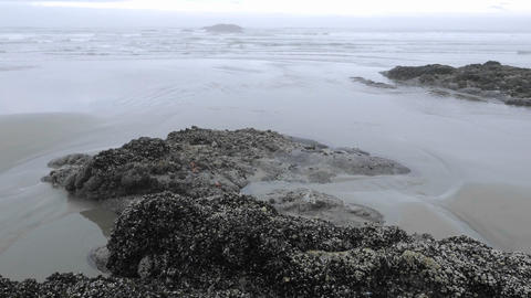 Time lapse of waves washing on Combers Beach in Pacific... Stock Video Footage