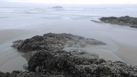 Time lapse of waves washing on Combers Beach in Pacific Rim National Park Reserve on Vancouver Islan Footage